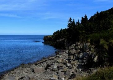 The battle that won't go away. Appealing the Digby Neck Quarry NAFTA decision