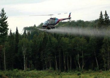 Glyphosate spraying on Nova Scotia forests continues