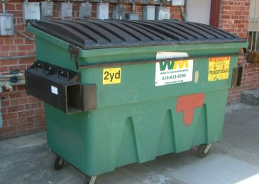 Dumpster diving in Halifax: a working professional's gig
