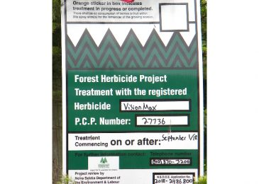 Open letter of concern: Stop herbicide spraying of our forests until science proves its safety