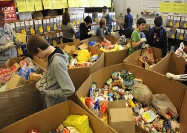 Food banks fail to get food to majority of food-insecure families, study finds