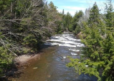 Press release: SuNNS urges Minister of Environment to approve Regulations passed by the Municipality of the County of Colchester regarding the Protected French River Water Area