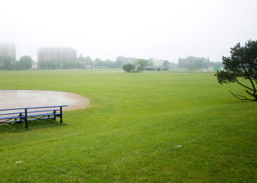 Why do Mayor and Council hold the Halifax Common in contempt?