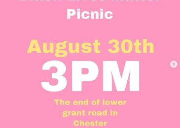 PSA: Black Lives Matter picnic