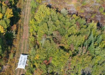 Press Release: No further aerial spraying of glyphosate in Nova Scotia this fall