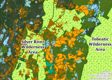 A picture is worth a thousand words: How clearcutting erodes connectivity between wilderness areas in Digby County