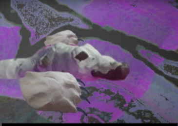 Polar bear, a climate grief poem and animated film by Anna Quon