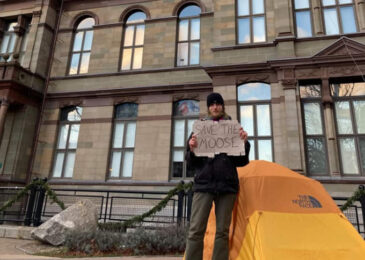 After three weeks of camping out, lone protester told to leave Grand Parade