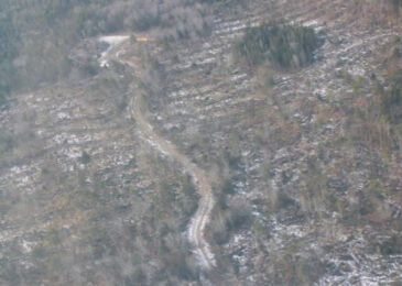 WestFor's claims about clearcuts in mainland moose habitat are disingenuous