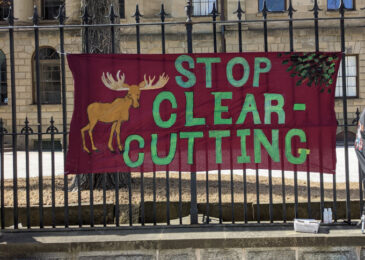 Calls for clearcutting moratorium grow in urgency as hunger strike enters day 9
