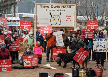 Press release: Save Owls Head Facebook group passes 5,000 member-mark
