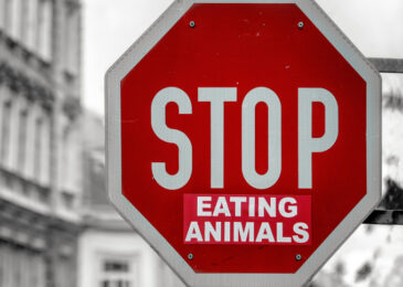 Eat your vegetables! Why veganism matters in a warming world